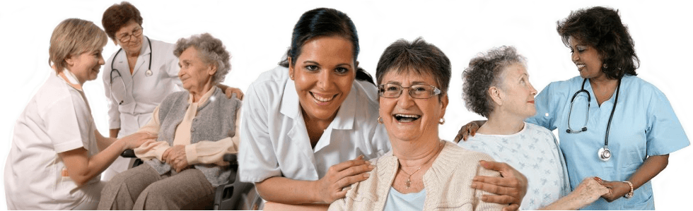 find home health aide certification, Human Body